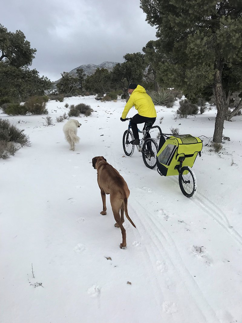 Trout Kids Bike Trailer in the Snow