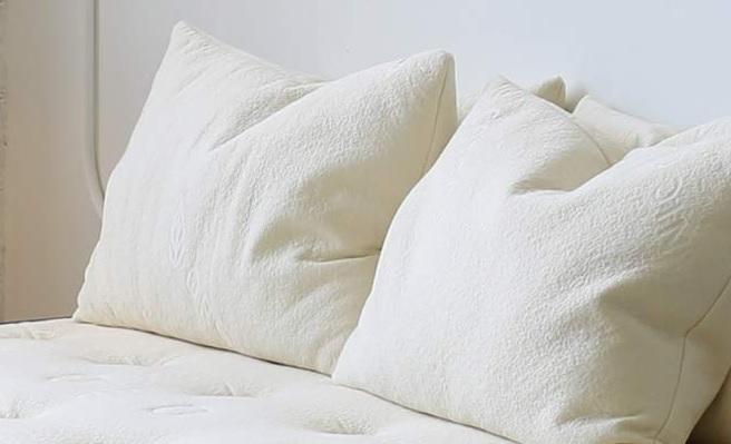 Avacado Organic Pillow