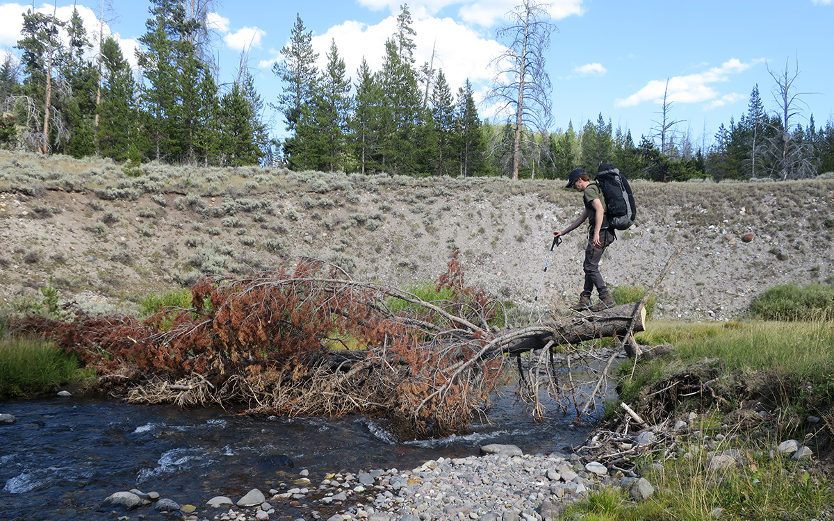 Crossing a Stream in Absorka Mountains