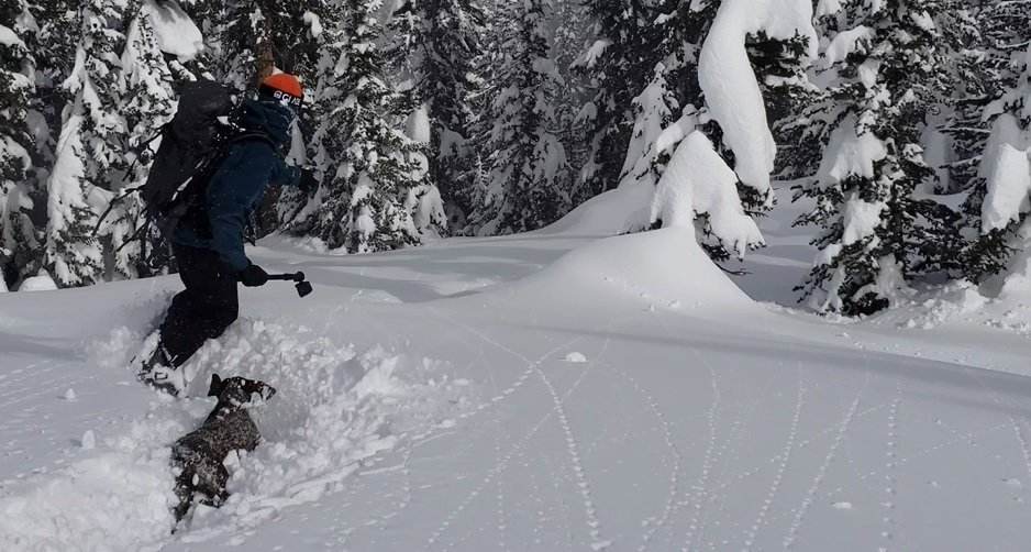 Snowboarding Powder in Jackson Hole