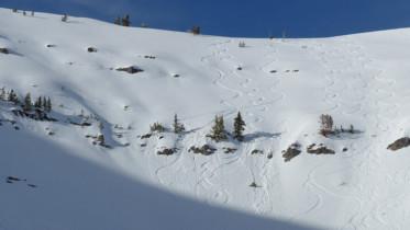 Little Tuckersmans Avalanche Teton Pass Wyoming Backcountry Skiing