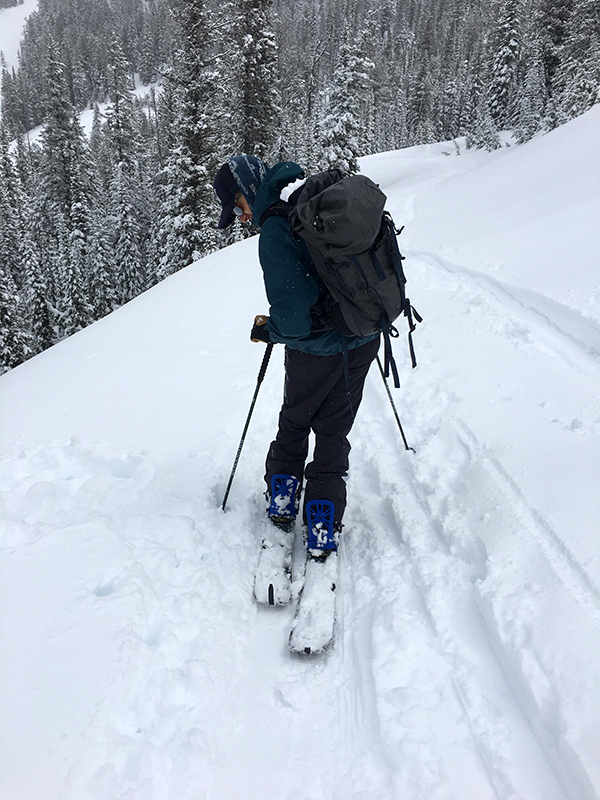 Splitboarder on Skin Track in Teton Pass Wyoming