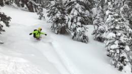 Snowboarder wearing bright jacket in powder