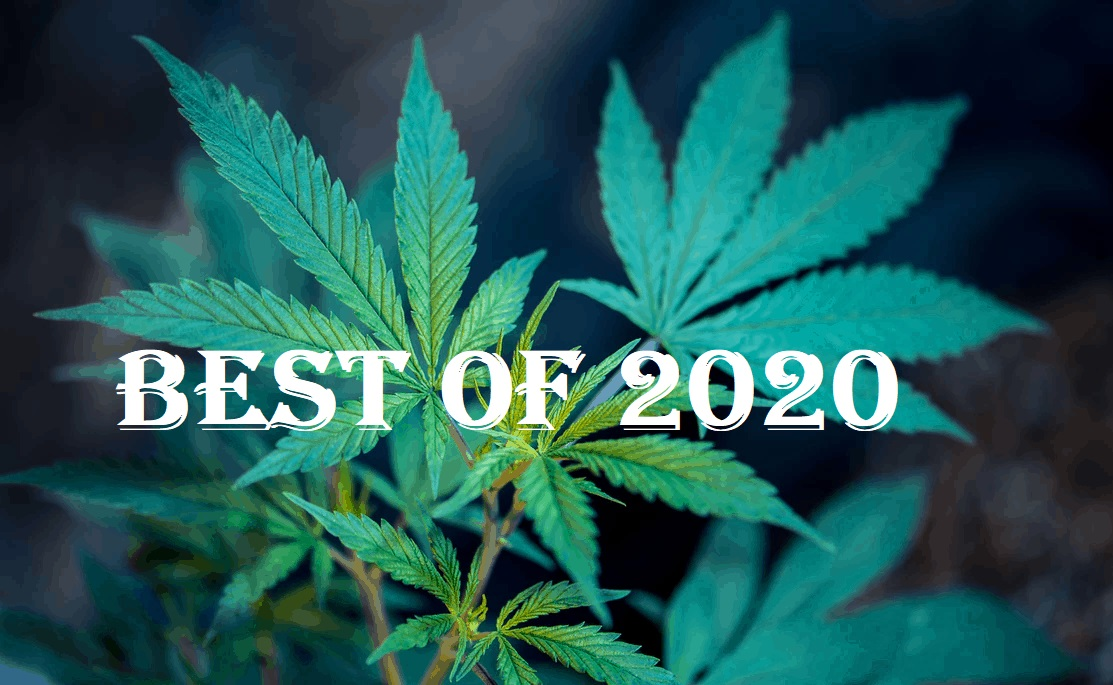 Top 10 Cannabis Brands to Watch in 2021