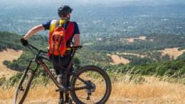 202 Mountain Bike Tires