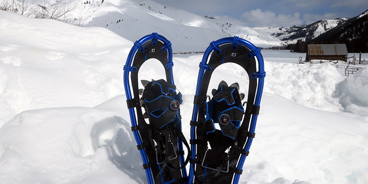 Best Snowshoes of 2021