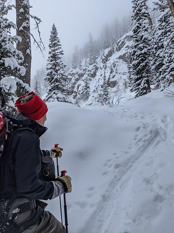 Ski Touring Wyoming