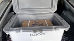 Igloo IMX 70 QT-Cooler