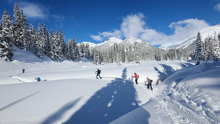 Evo Journeyman Lodge Whistler